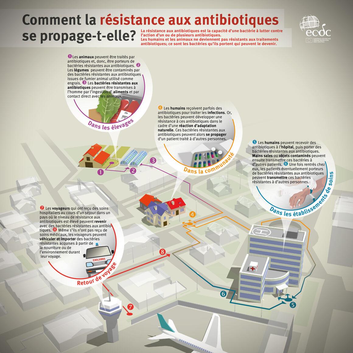 Comment la résistance aux antibiotiques se propage-t-elle?