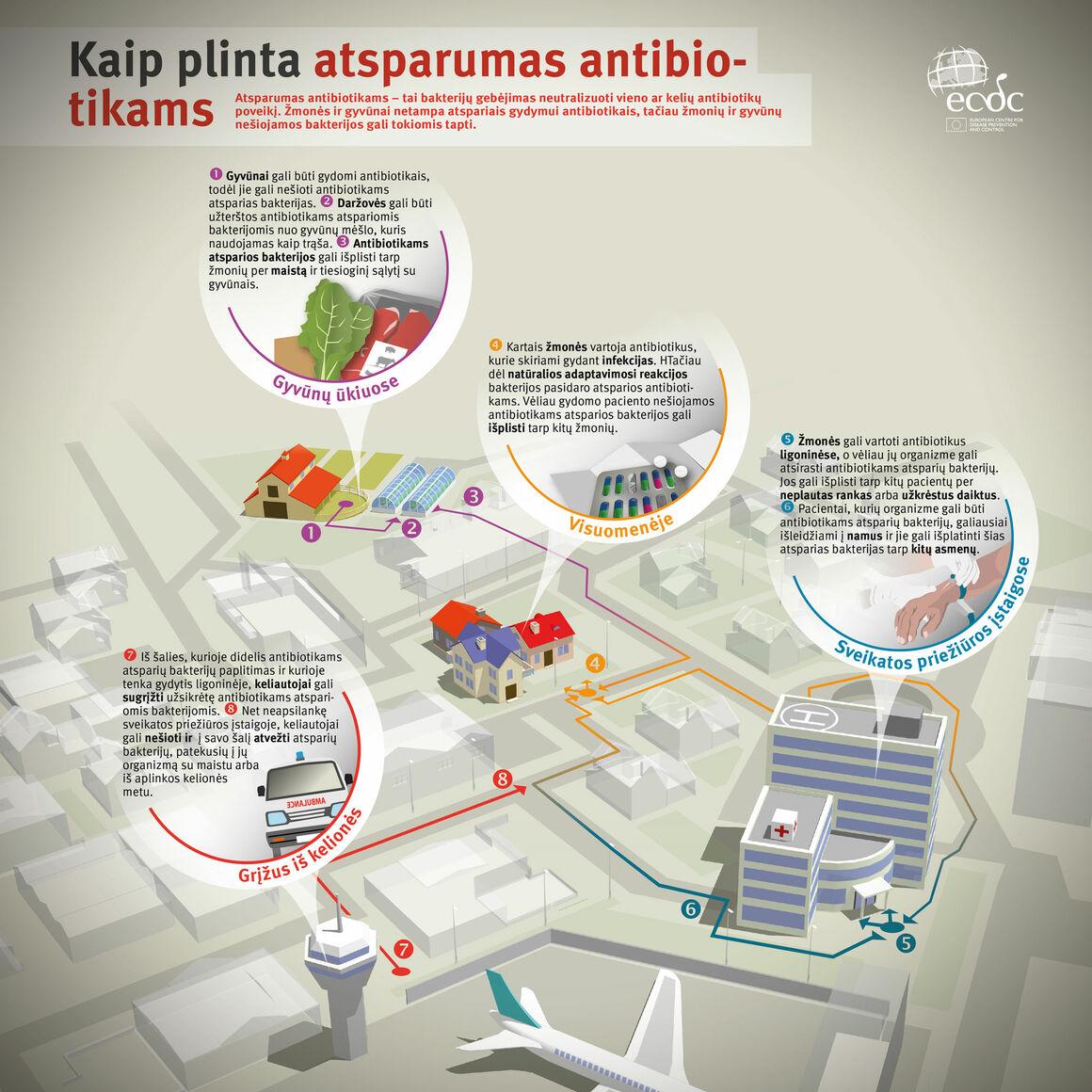 Kaip plinta atsparumas antibiotikams