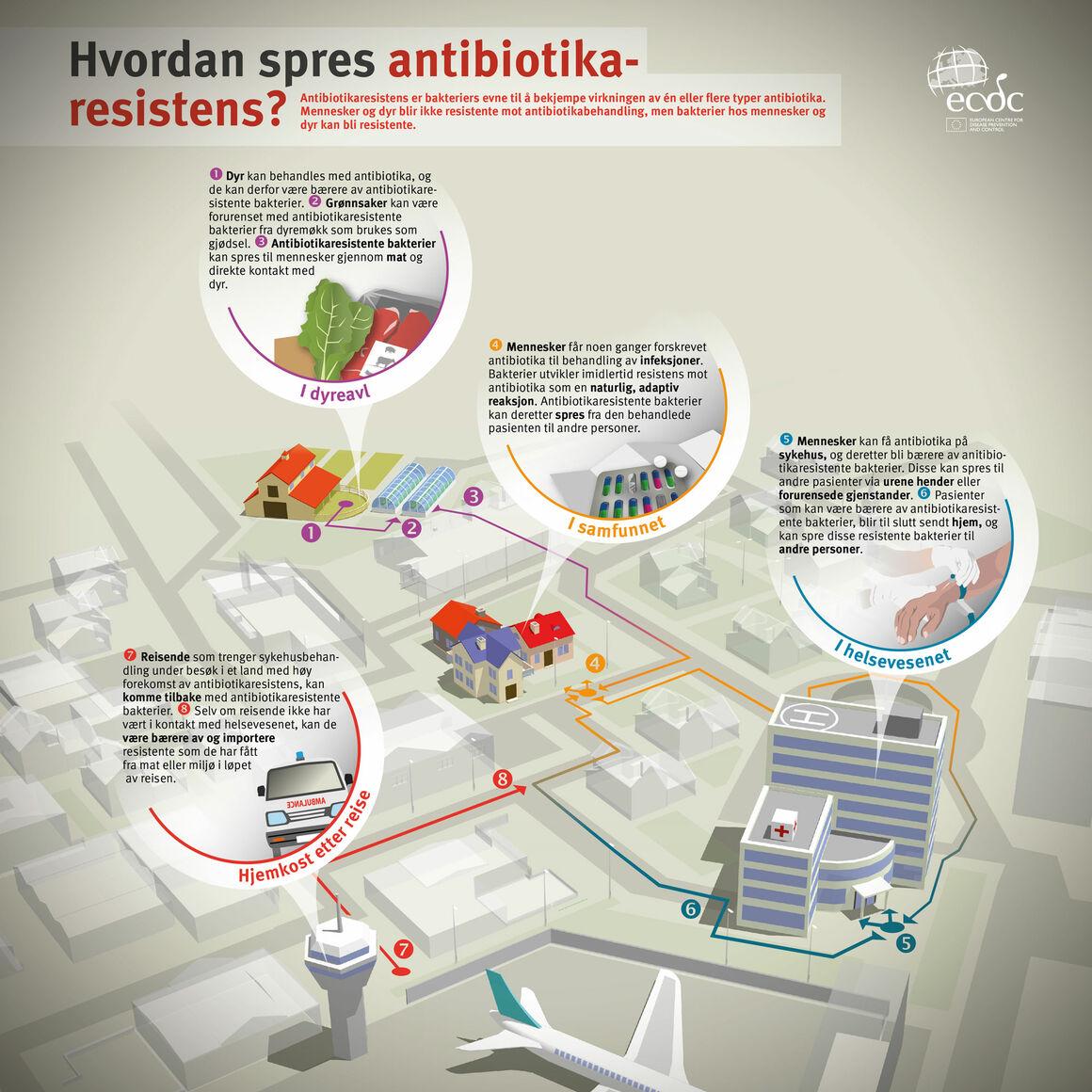 Hvordan spres antibiotikaresistens?
