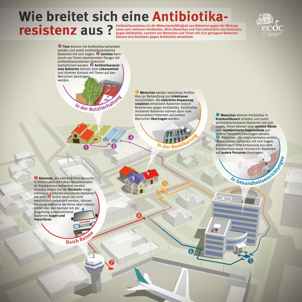 Wie breitet sich eine Antibiotikaresistenz aus?