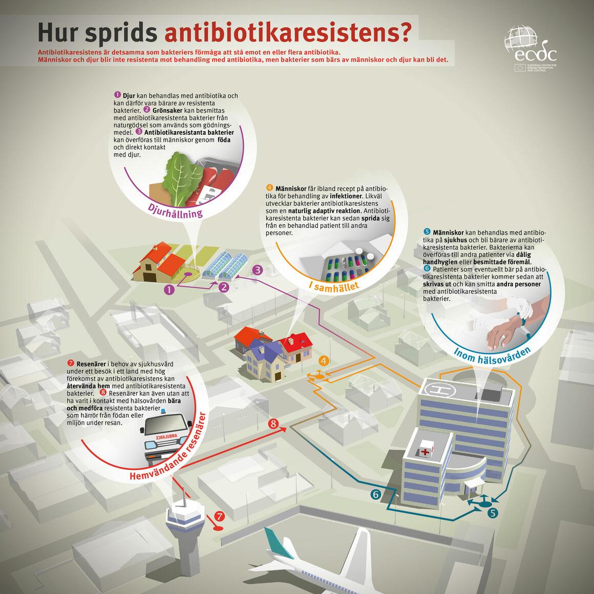 Hur sprids antibiotikaresistens?