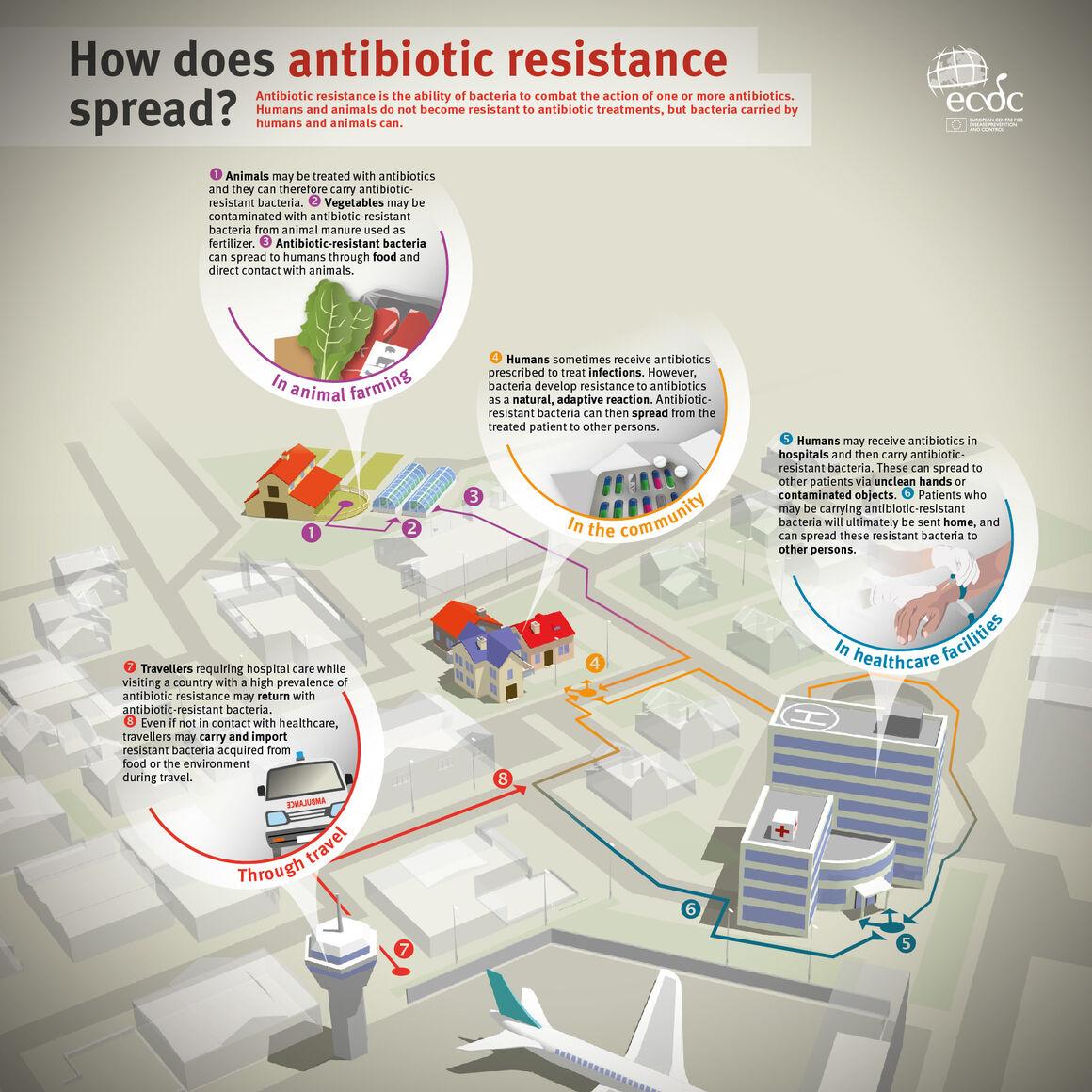 ¿Cómo se propaga la resistencia a los antibióticos?